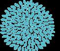 OncoloMed logo