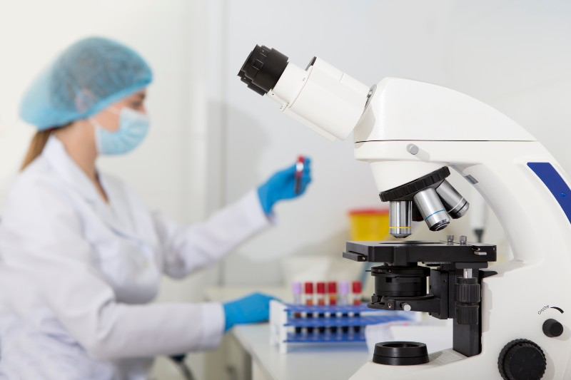 person looking at cells in lab